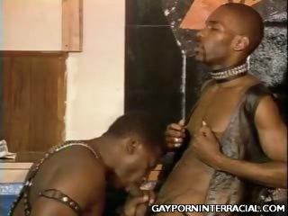 Porno Video of Black Gays Sucking Off Cocks